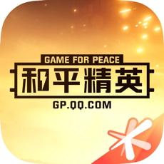 和平精英游戏助手
