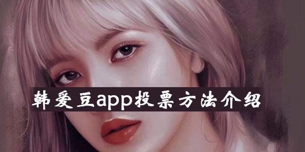 韩爱豆app投票方法介绍