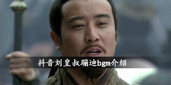 抖音刘皇叔蹦迪bgm介绍